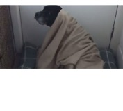 'Burrito Dog' Enjoys Wrapping Himself Up in His Blanket - Video