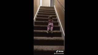Fearless little girl slides down the stairs