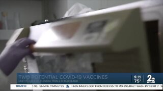 Two potential COVID-19 vaccines