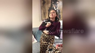 Emotional moment US woman who lost her dog receives surprise puppy for Christmas