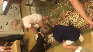 Kid Loses Tug Of War With Dog