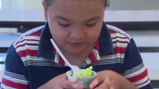 Packing healthy lunches for kids - Video
