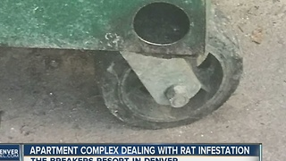 State investigating rat infestation response - Video