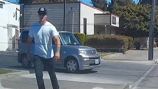 Furious Jaywalker Runs After Car When Consumed by Rage - Video