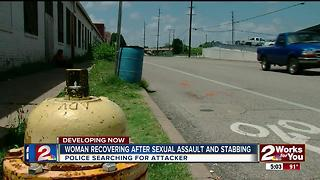 Woman recovers from sexual assault and stabbing - Video