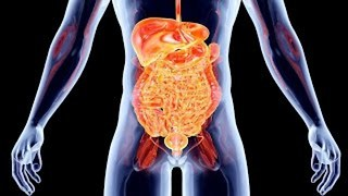 Top 10 Facts You Didn't Know About Your Body - Video