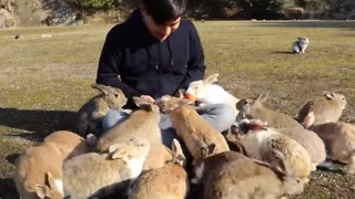 Cuddly Rabbits Swarm Tourist for Carrots - Video