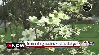 Summer allergy season is worse than last year - Video