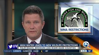 High water restricts access to Everglades, Francis S. Taylor Holey Land, Rotenberger Wildlife Management areas - Video
