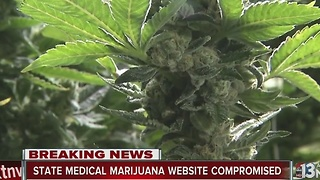 Nevada state medical marijuana portal compromised in cyber-attack - Video