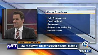 Dr. Soria: Surviving allergy season in South Florida - Video