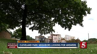 Cleveland Park Tree Illegally Chopped Down - Video
