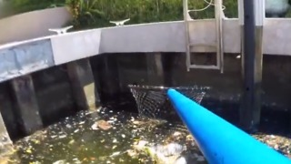 Removing trash from our Intracoastal waterways - Video