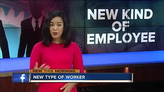 New Collar Workers in Employment - Video