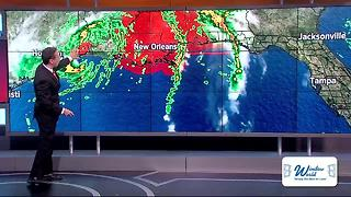 Tropical Storm Cindy makes landfall on Gulf coast - Video