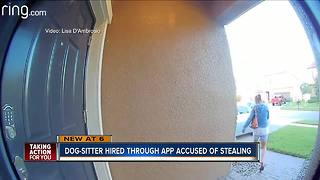 Rover dog-sitter charged with stealing from Pasco woman whose dog she was watching - Video