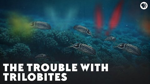 The Trouble With Trilobites