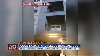 Good Samaritans rescue dangling dog - Video