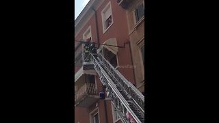 Firefighters save kitten from window awning on 6-story building - Video