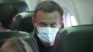 Alexei Navalny Detained Upon Return To Russia