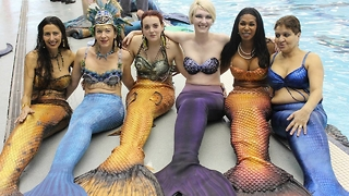 People are working professionally as mermaids - Video