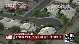 Goodyear officers hurt after family-fight breaks out - Video
