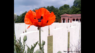 10 Remarkable Facts About World War One - Video
