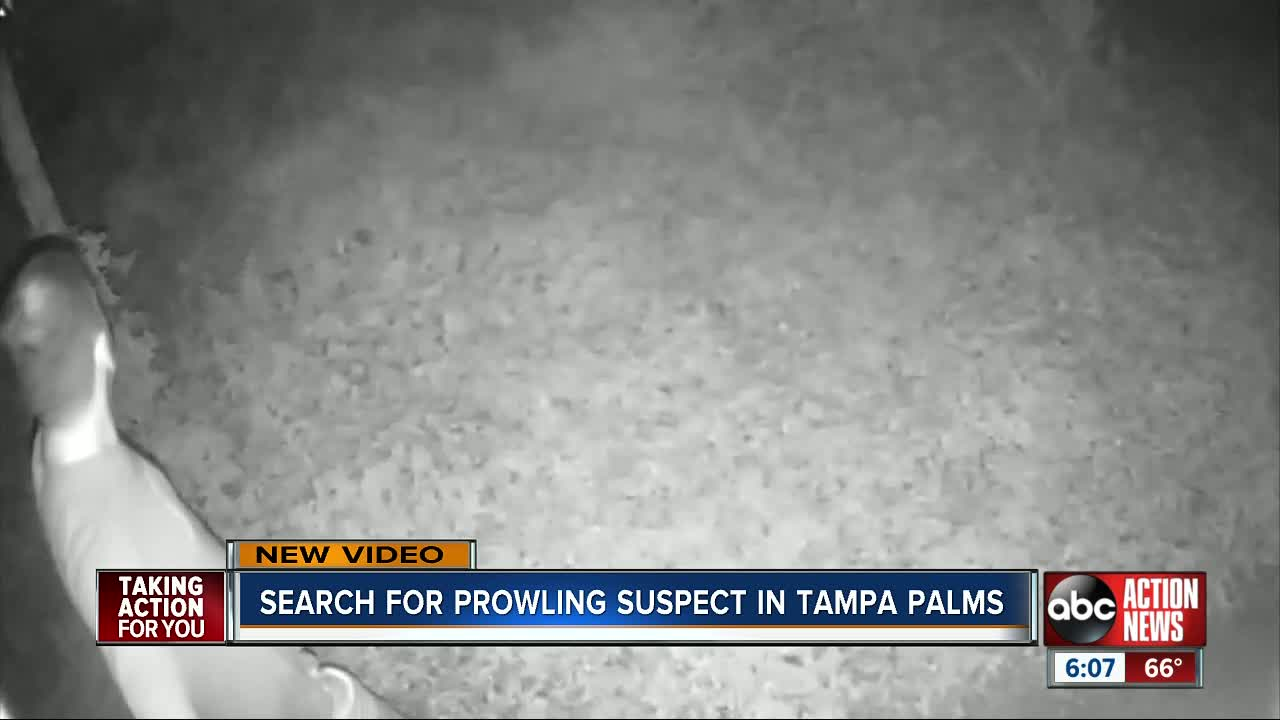 Prowler caught on camera wanted by Tampa Police