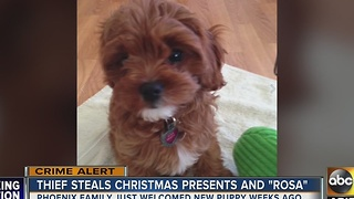 Family's Christmas gifts, puppy stolen from home - Video