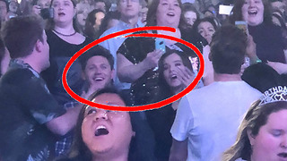 NOT Just Friends! Niall Horan & Hailee Steinfeld Get Close & Cozy on Concert Date - Video