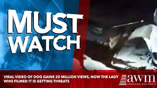 Viral Video Of Dog Gains 20 Million Views, Now The Lady Who Filmed It Is Getting Threats - Video