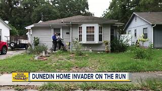 Woman shot during home invasion in Dunedin