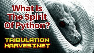 What Is The Spirit Of Python???