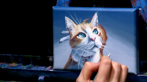 Acrylic Pet Portrait of an Orange Cat - Time-Lapse - Artist Timothy Stanford