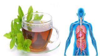 Drinking peppermint tea daily provides incredible health benefits