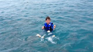 Boy Makes Friends With Fish - Video