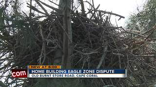 Home building eagle zone dispute - Video