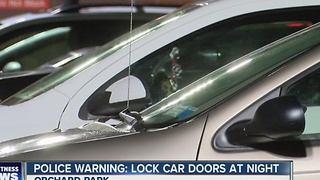 Orchard Park Police warn neighbors to lock their cars - Video