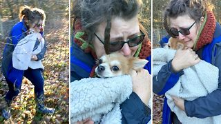 Puppy love – Emotional footage shows overjoyed family after being reunited with missing dog