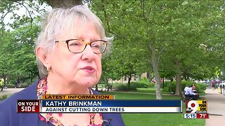 Resident fights corporate giant to save trees at Lytle Park