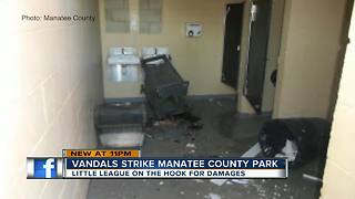 Vandals caught on security cameras destroying property at local baseball fields - Video