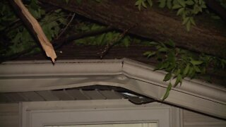 Tree falls on home in Fond du Lac after storms