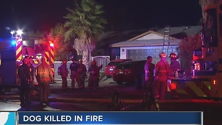 Dog dead in early morning house fire - Video