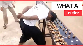 Man smashes world record for smashing walnuts with his head