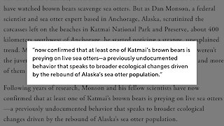 Hungry Bears Going After Sea Otters In Alaska