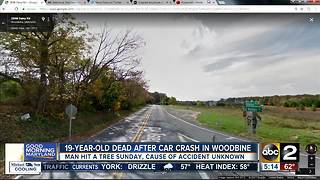 19-year-old dead after car crash in Woodbine - Video