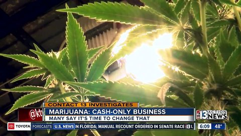 Preview: Cannabis cash is tough to stash
