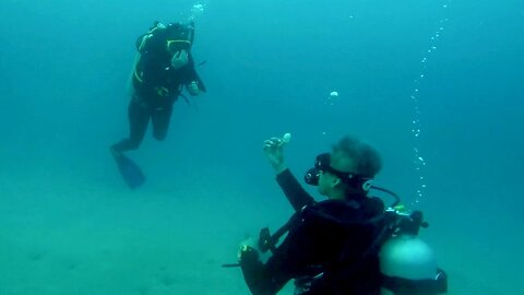 This Couple Took The Plunge! Man Propose To Girlfriend While They're Both Scuba Diving