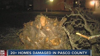 20+ homes damaged in Pasco County - Video