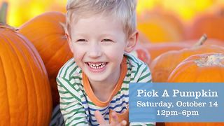 Skye Canyon giving away free pumpkins today - Video